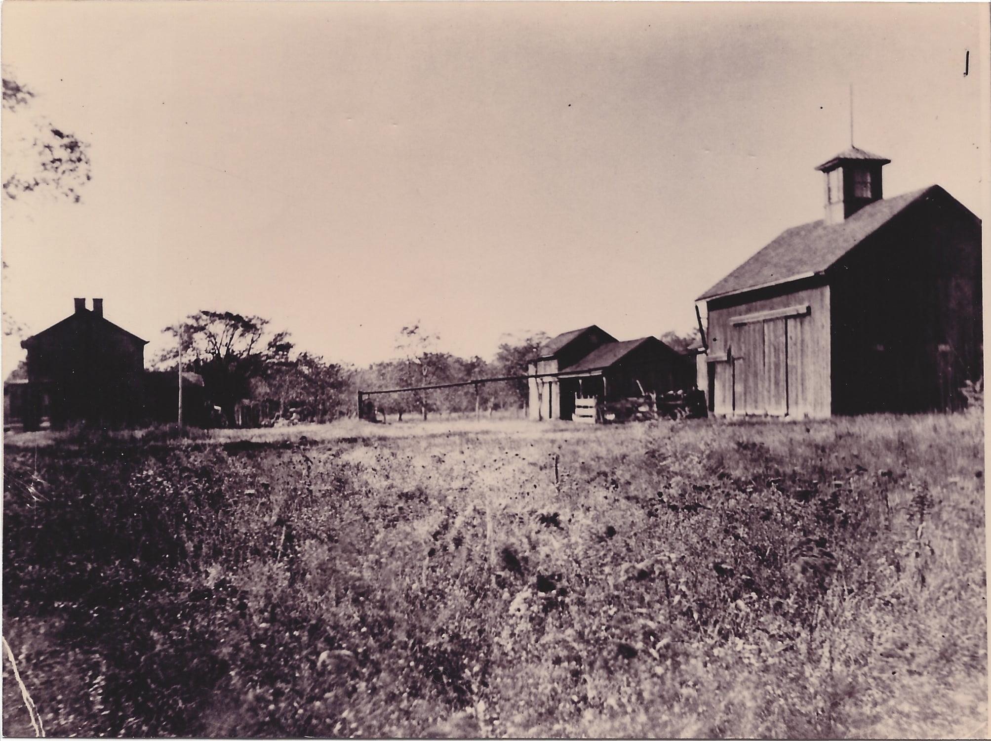 23.Woodbury Farm
