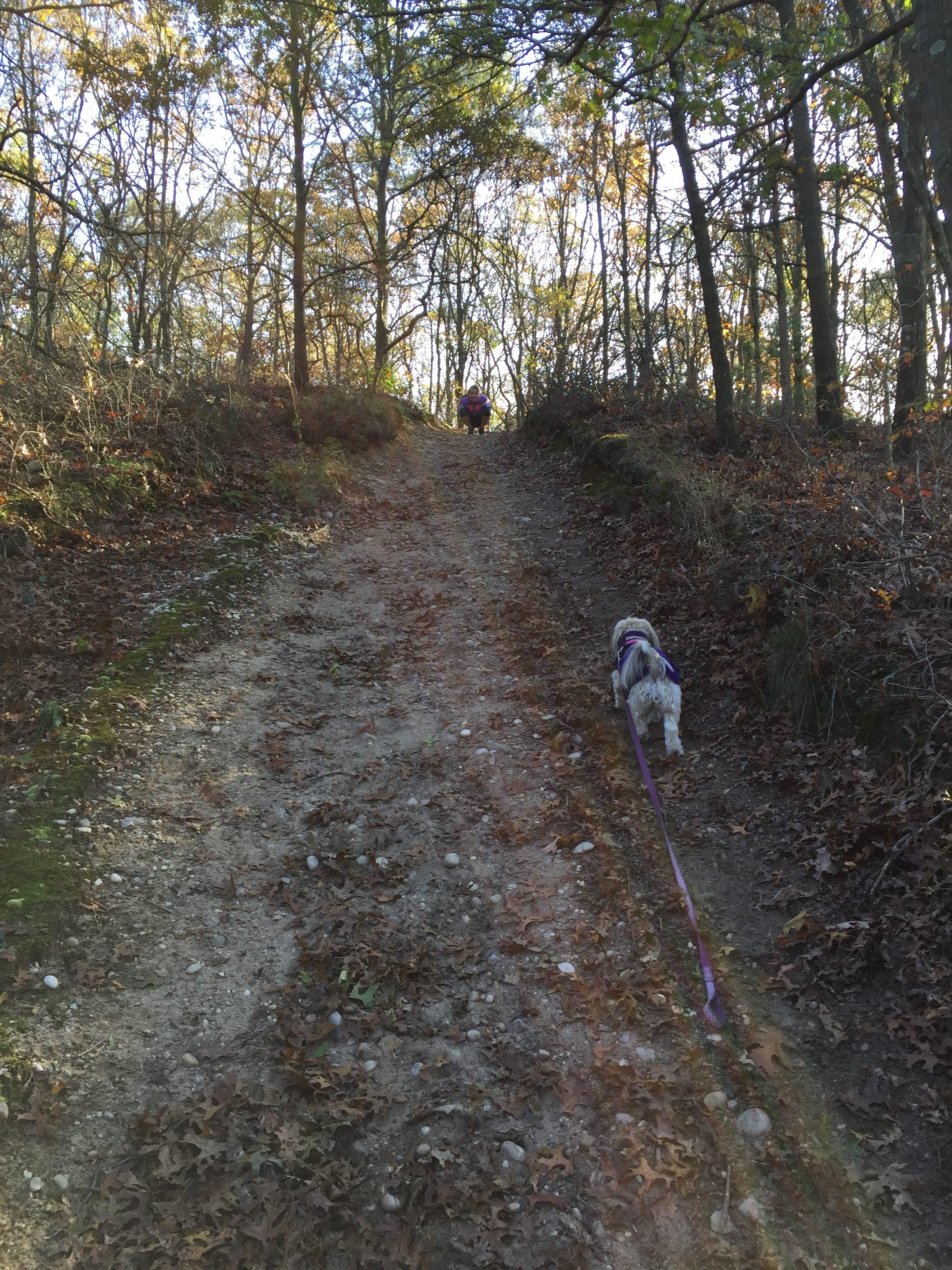 Zen climbing hill